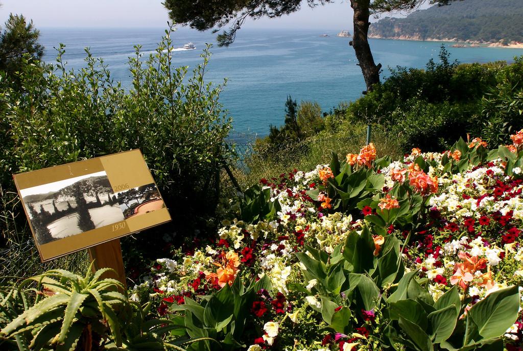 Цветы, Сады Святой Клотильды