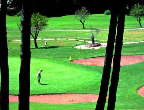 Поля для гольфа в Камп-де-Мар
