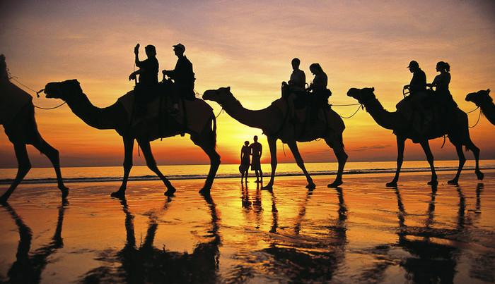 Прогулки на верблюде