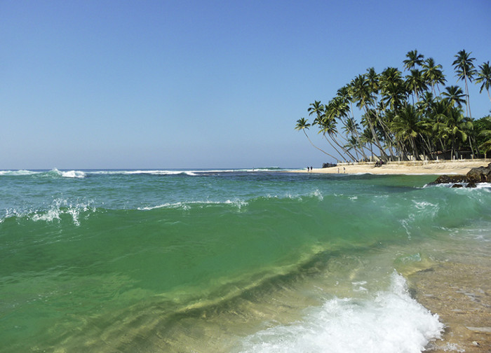 Температура воды в океане практически всегда одинаково теплая