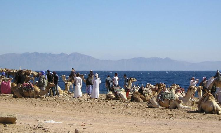 Деревня бедуинов Рас-а-Сатан