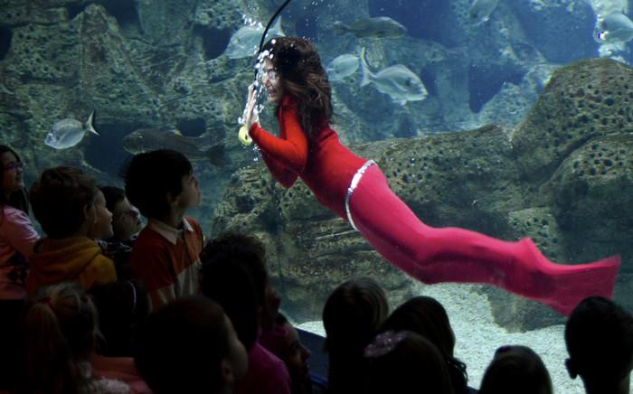 Критский аквариум Cretaquarium