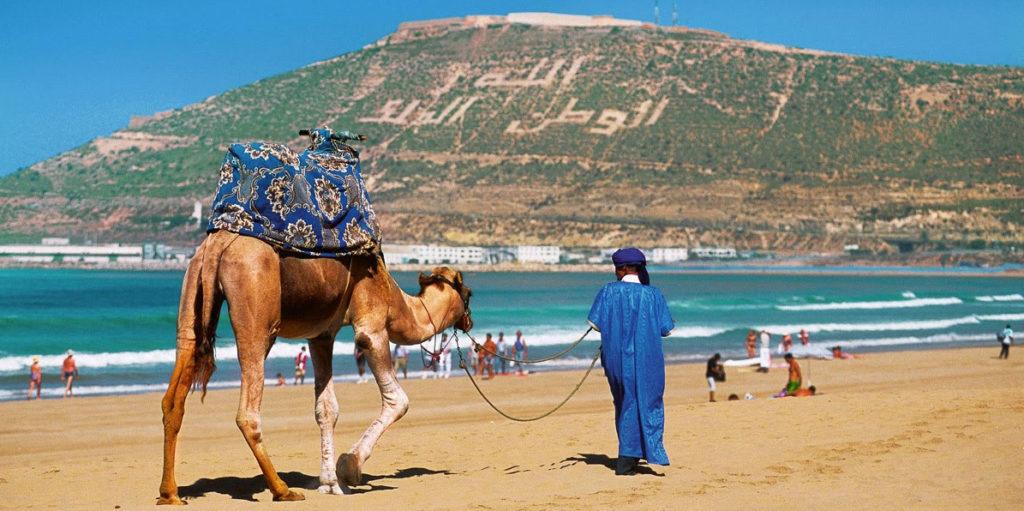 Катание на верблюде в Агадире