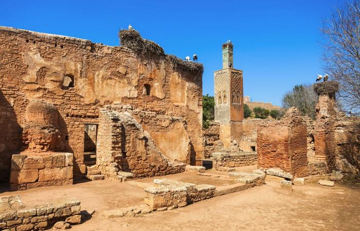 Руины крепости Шелла