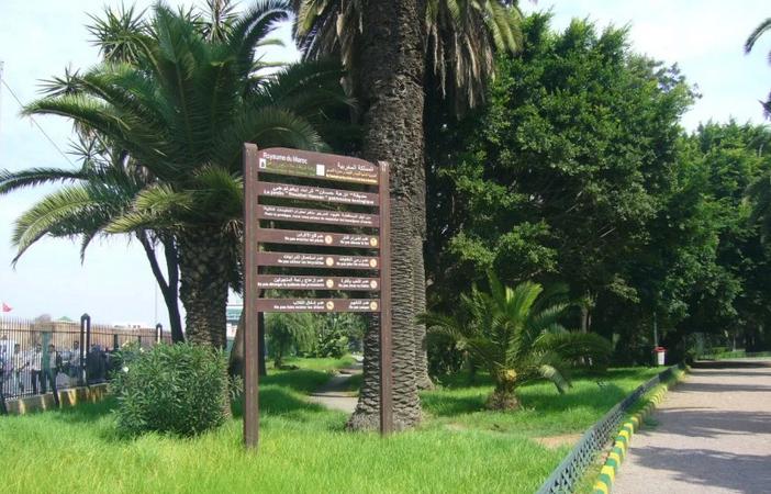 Сад Nouzhat Hassan