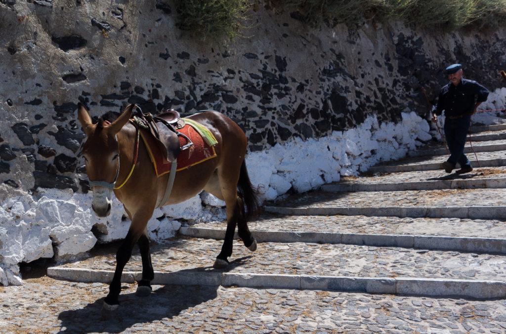Самый популярный туристический транспорт в Санторини